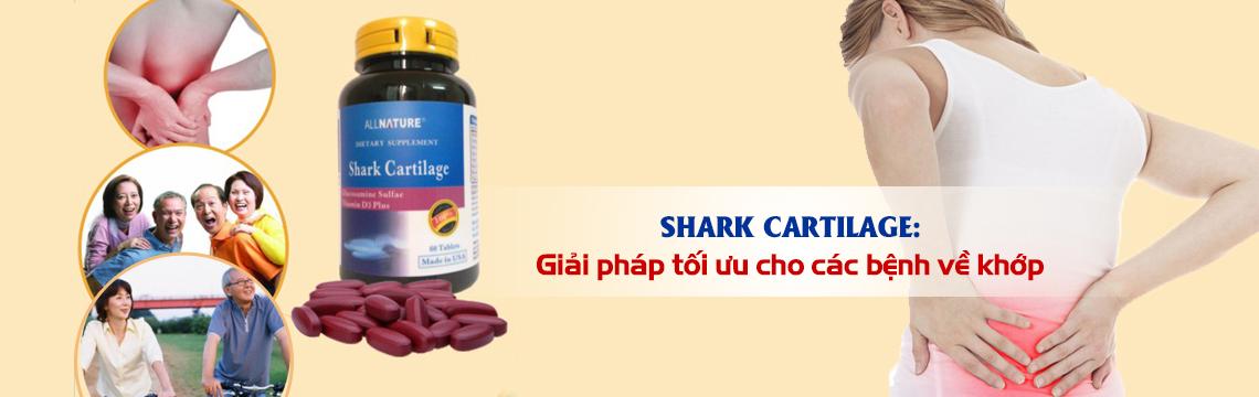 http://rosix.com.vn/shark-cartilage-giai-phap-toi-uu-cho-cac-benh-ve-khop