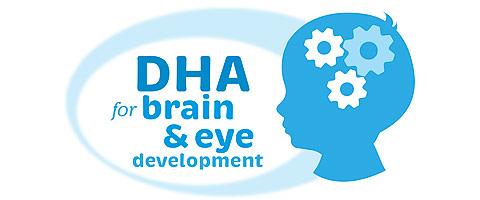 Tại sao cần phát triển não bộ